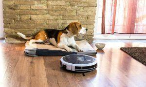 robot aspirador simplifica tu vida