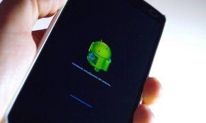 ¿Sabes cómo actualizar tu móvil Android a la última versión?