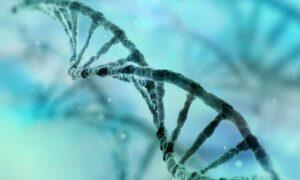 Una nueva técnica más precisa para corregir mutaciones genéticas